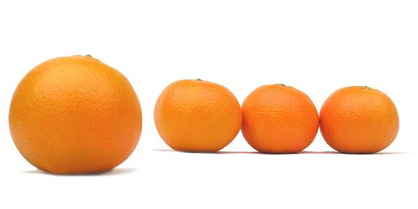 mandarinas-img5