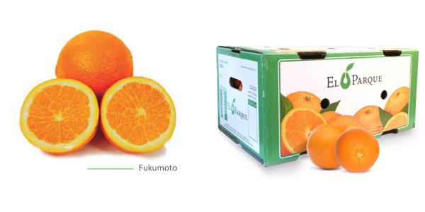 naranjas-img2