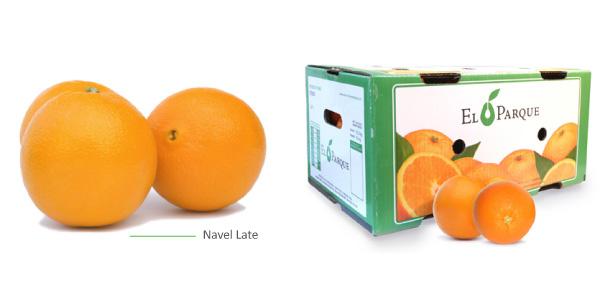 naranjas-img3