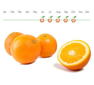 Disponibilidad Naranjas