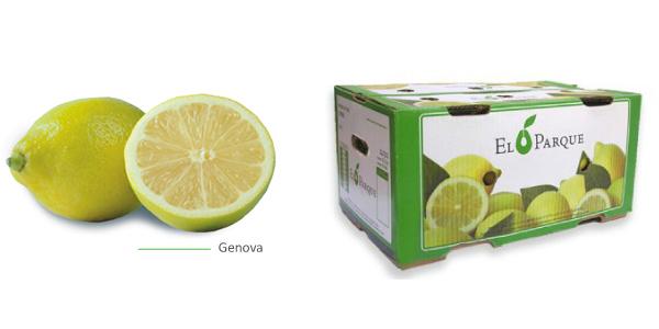 limones-img1