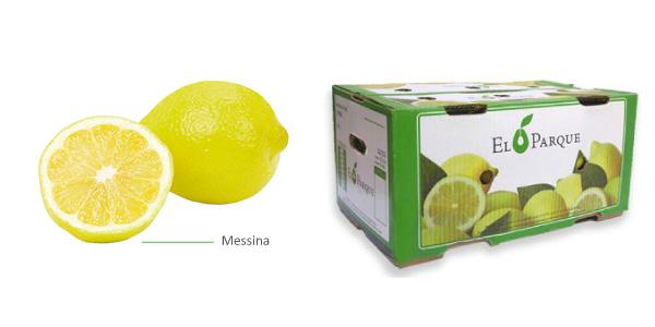 limones-img2