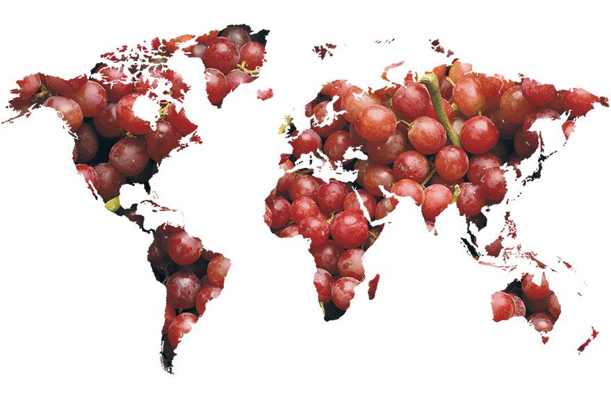 mapa-uvas